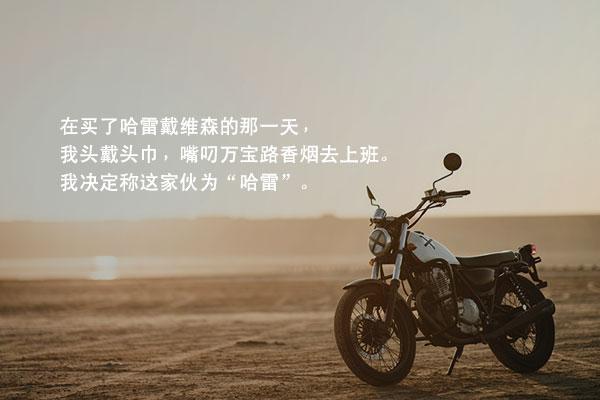 裴相敏的小说《再见!哈雷》