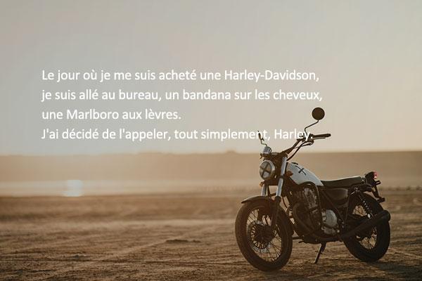 « Adieu, Harley » de Bae Sang-min
