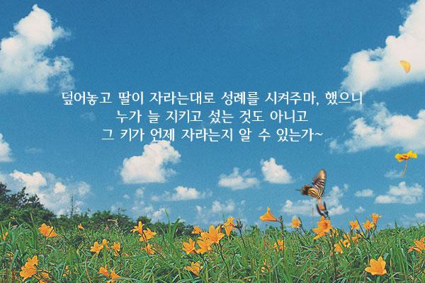 봄봄 - 김유정