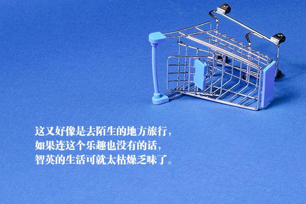 表明姬的小说《你喜欢购物吗?》