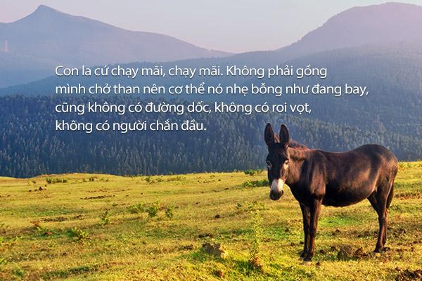 Hai con la (Choi Il-nam)
