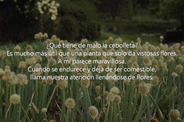 'La flor de la cebolleta', de Lee Hyun Soo