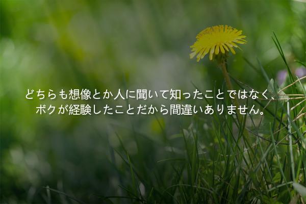 朴婉緖(パク・ワンソ)の短編小説「屋上のタンポポの花」