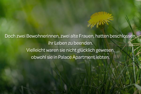 """Bak Wanseo: """"Der Löwenzahn auf dem Dach"""""""