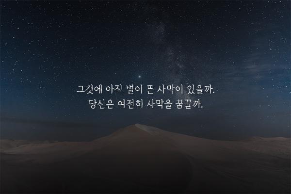 사막으로 - 천선란