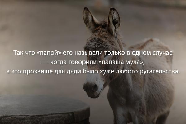 Рассказ «В поисках лошади» писателя Ли Сун Вона