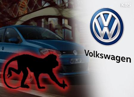 Polémica en Volkswagen por pruebas con monos y humanos