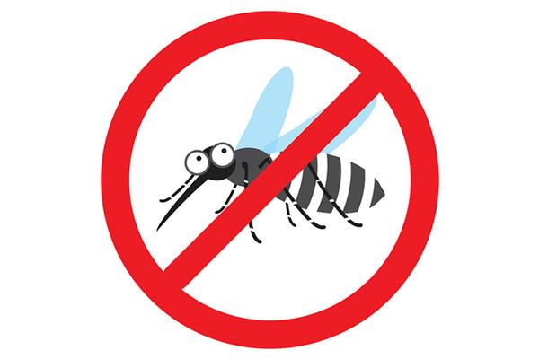 El calor intenso acaba con los mosquitos