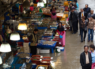 Chợ thủy sản Noryangjin, đại dương giữa lòng thành phố