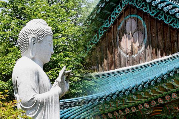 Youngpyungsa, el templo budista de las manzanillas