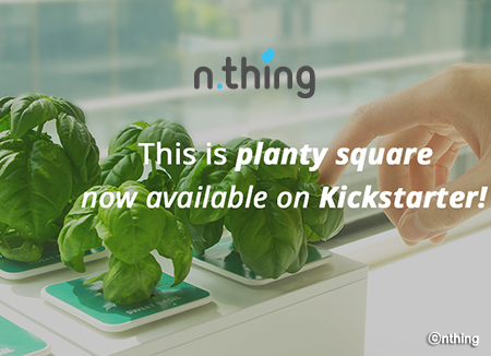 n.thing, a startup combining IoT and farming