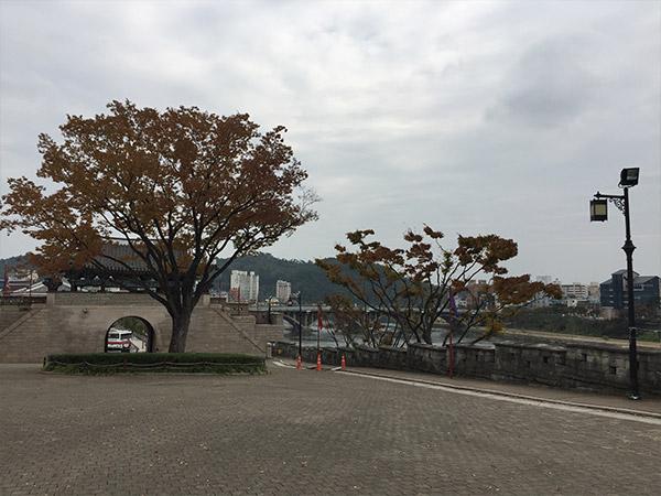 Jinju
