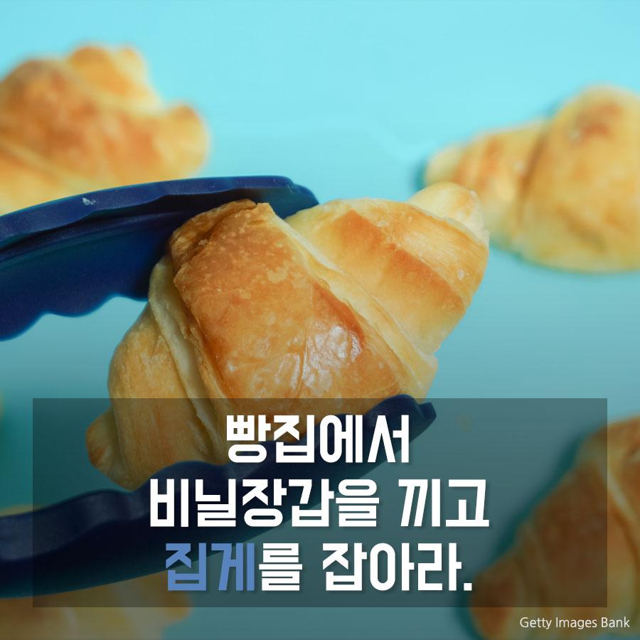 빵집에서 비닐장갑을 끼고 ____를 잡아라