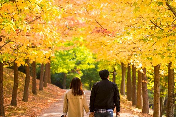 Die schönste Zeit des Jahres: Herbst