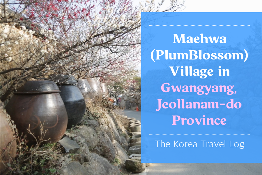 #05. Maehwa (Plum Blossom) Village in Gwangyang, Jeollanam-do Province