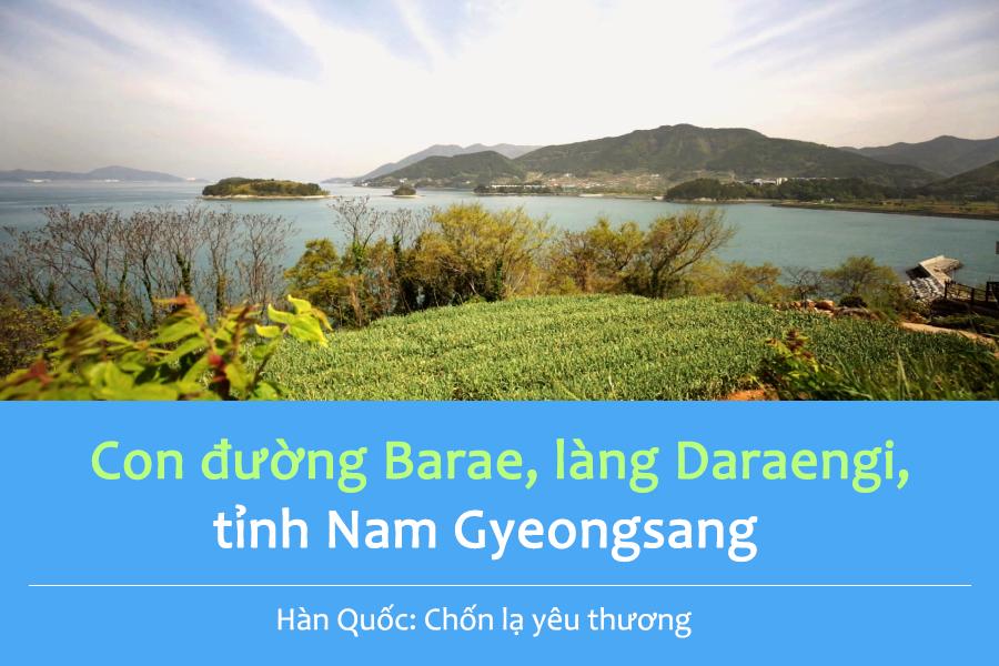 #11. Con đường Barae, làng Daraengi, tỉnh Nam Gyeongsang