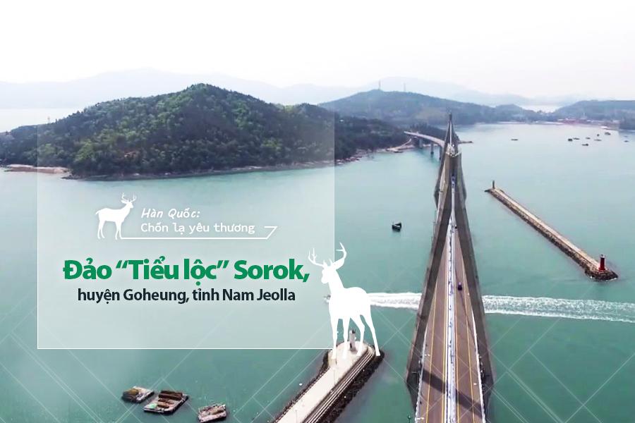 "Đảo ""Tiểu lộc"" Sorok, huyện Goheung, tỉnh Nam Jeolla"