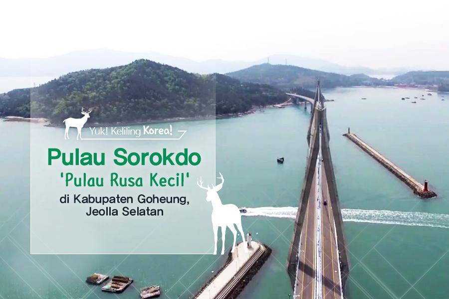 #17. Pulau Sorokdo 'Pulau Rusa Kecil' di Kabupaten Goheung, Jeolla Selatan