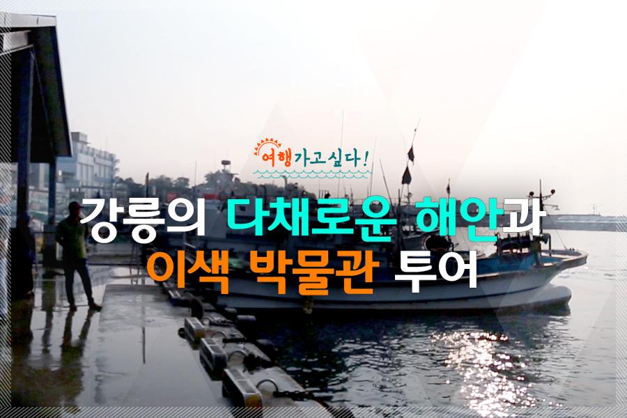 #22. 강릉의 다채로운 해안과 이색 박물관 투어