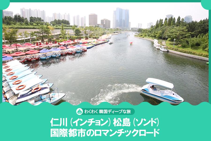 #27. 仁川(インチョン)松島(ソンド)国際都市のロマンチックロード