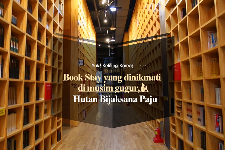 #38. Book Stay yang dinikmati di musim gugur, Hutan Bijaksana Paju