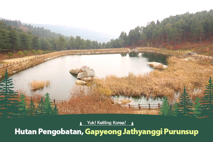 #39. Hutan Pengobatan, Gapyeong Jathyanggi Purunsup