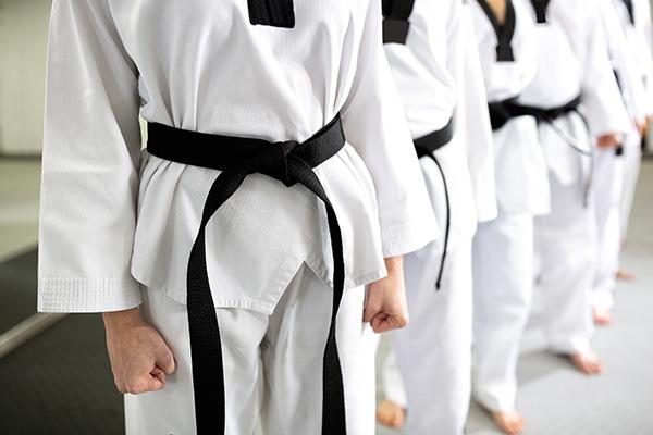 Taekwondo sucht in Online-Übertragungen eine Lösung in der Corona-Zeit.