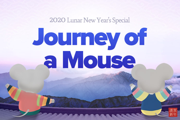Journey of a Mouse